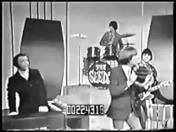 The Seeds - Can't Seem to Make You Mine (1965)